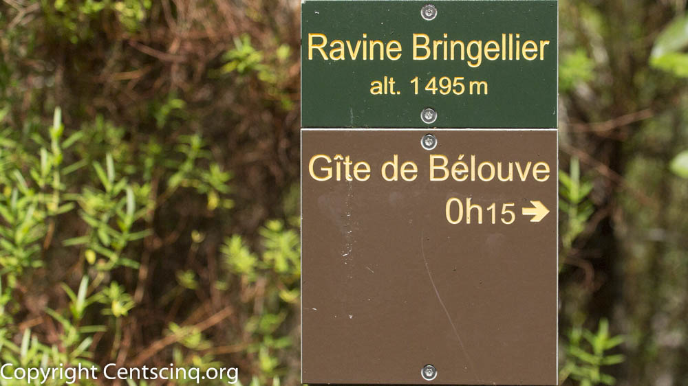 Ile de la Réunion-36-2
