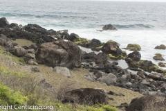Ile de la Réunion-21-3